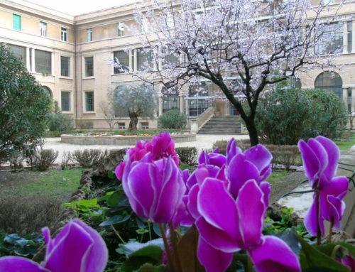 Jardins do Colégio