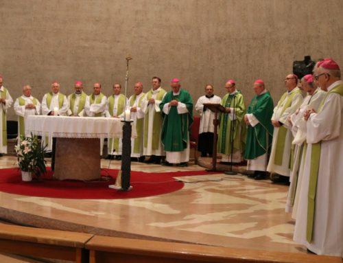 Bispos do Regional Sul 2 estão em Roma para a visita Ad limina